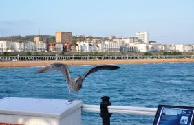 Brighton and Hove, 345,000 visitors in 2012