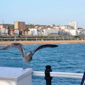 Brighton and Hove, 345,000 visitors in 2012