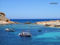 language travel to Ibiza