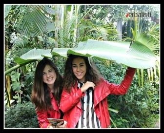 Verbalisti at Oxford University Botanical Gardens