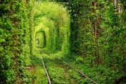 the Tunnel of Love in Kleven, Ukraine