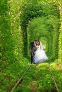 Tunnel of love is perfect for weddings