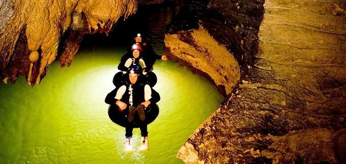 Glowworm Caves in New Zealand