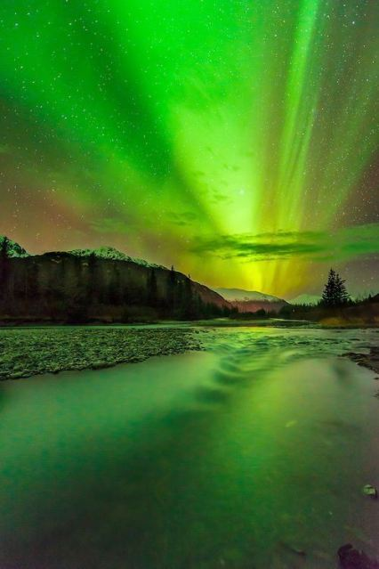 Aurora borealis display over Portage Valley, Chugach National Forest, Alaska