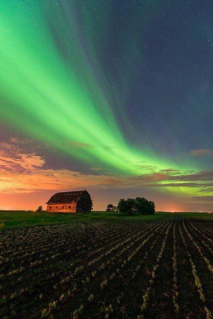 Northern lights over abandoned barn