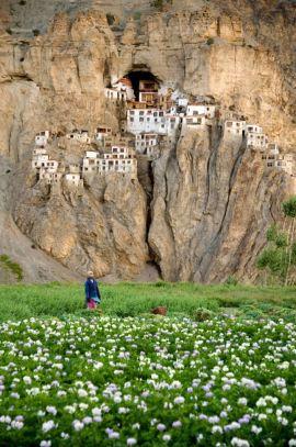 Phuktal Monastery