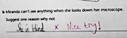 Test Answers From Kids, 8
