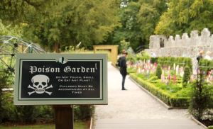 The Poison Garden, Blarney Castle